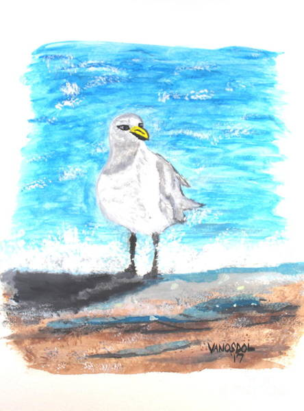 Gulf Shores Alabama Painting - Seagull On The Beach - Watercolor Painting by Scott D Van Osdol