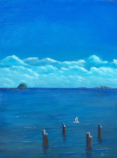 Painting - Seagull Seascape IIi by Tony Rodriguez