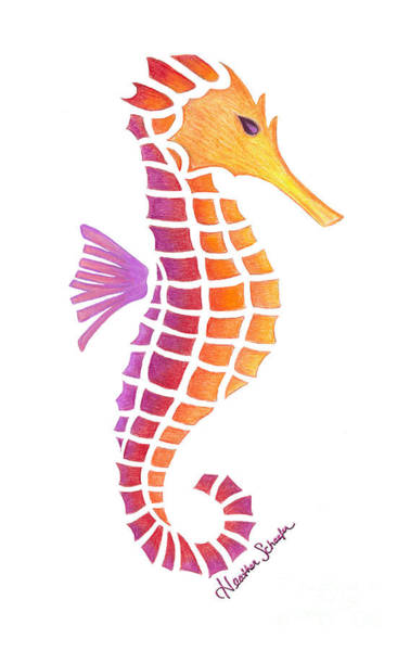 Drawing - Seahorse by Heather Schaefer