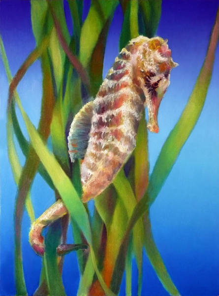 Wall Art - Painting - Seahorse I Among The Reeds by Nancy Tilles