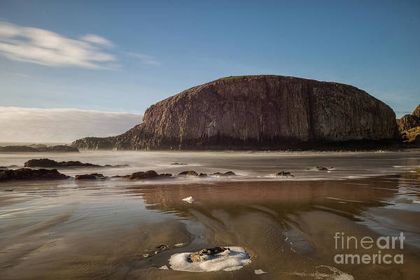 Photograph - Seal Rock by Craig Leaper