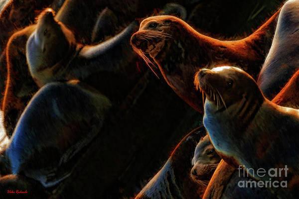 Photograph - Seal Slumber Party by Blake Richards