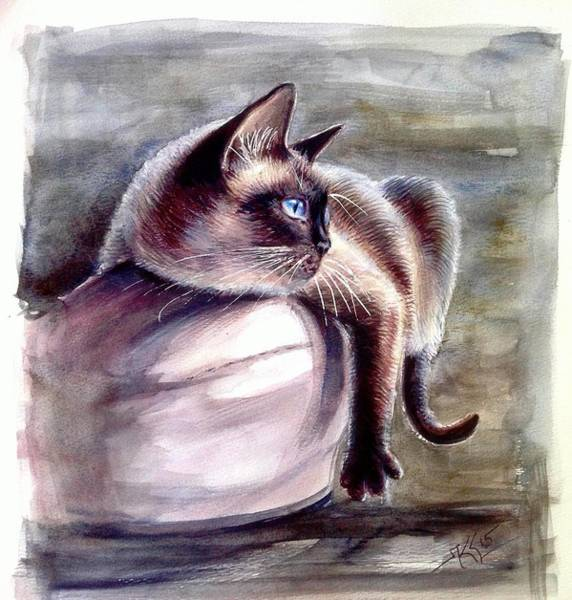 Siamese Cat 2 Art Print