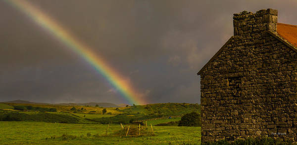 Photograph - Search For The Leprechaun by Tim Bryan