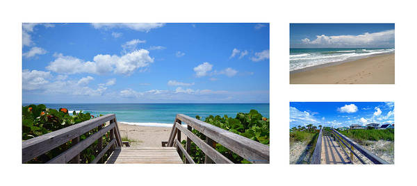 Photograph - Seascape  Boardwalks Treasure Coast Florida Collage 1 by Ricardos Creations