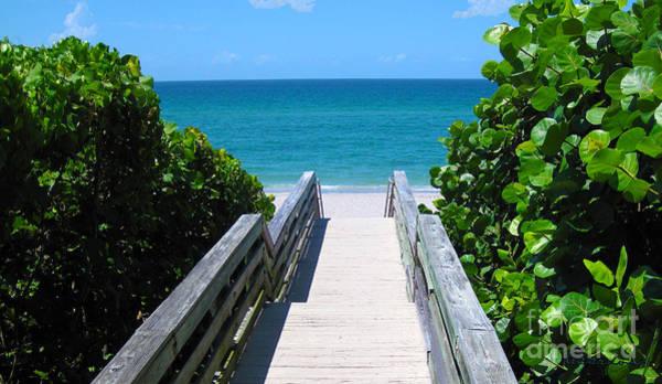 Photograph - Seascape Juno Beach Boardwalk B2 by Ricardos Creations