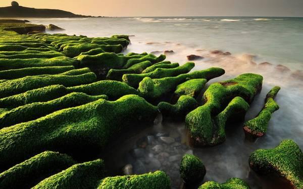 Digital Art - Seascape by Maye Loeser