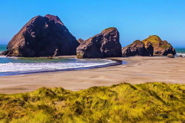Oregon Dunes Photograph - Seascape Oregon Coast by Garry Gay