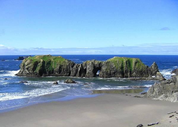 Photograph - Oregon Seascape Supreme by Will Borden