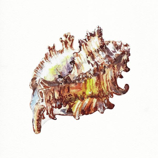 Painting - Seashell Art Beach Treasure Sea Shell II by Irina Sztukowski