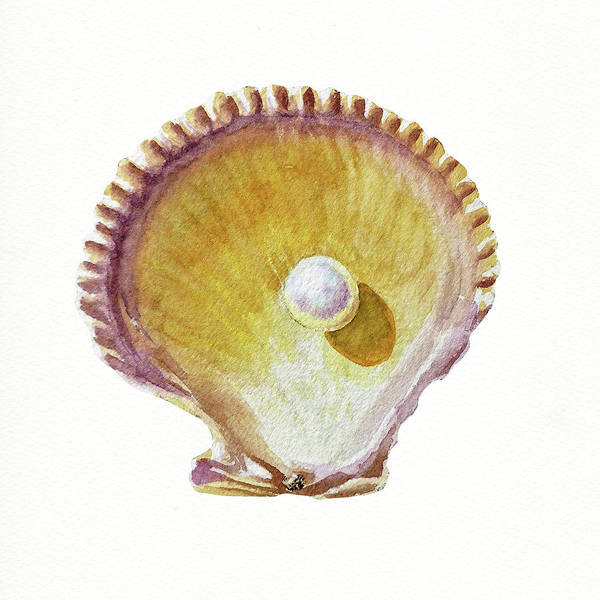 Wall Art - Painting - Seashell Art Beach Treasure Sea Shell Vi by Irina Sztukowski