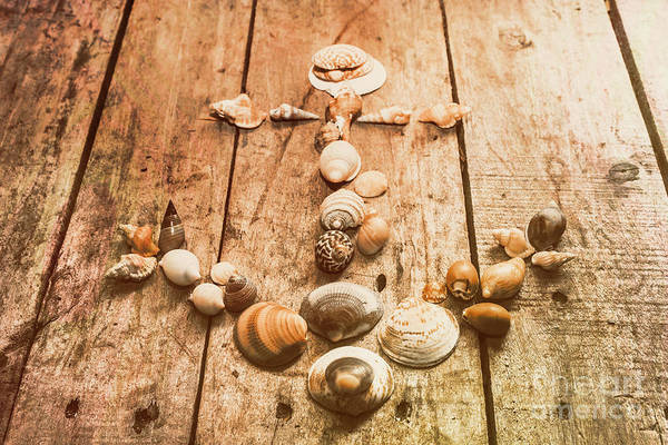 Oceanic Photograph - Seashell Nautical Anchor by Jorgo Photography - Wall Art Gallery