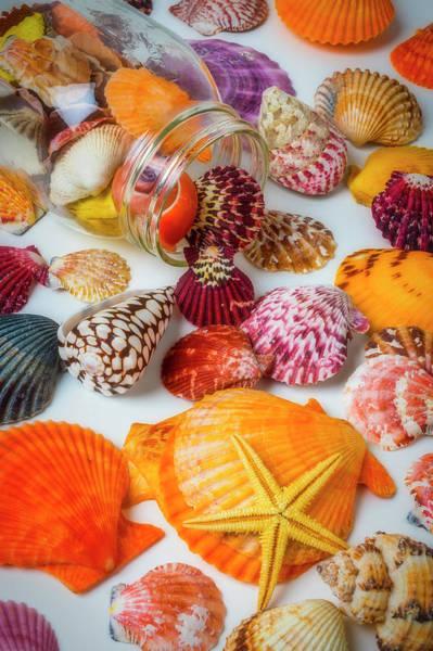 Wall Art - Photograph - Seashells And Glass Jar by Garry Gay