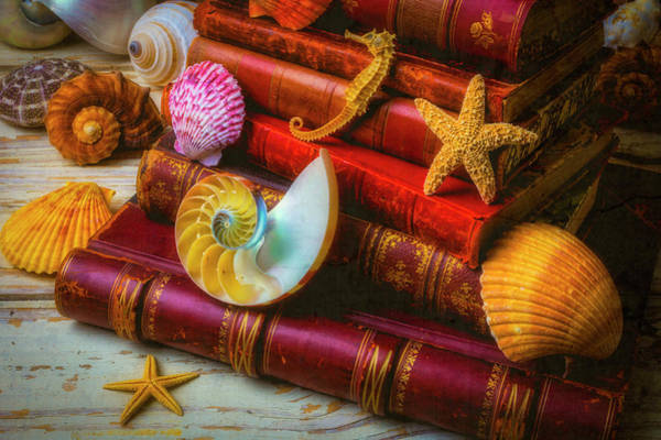 Wall Art - Photograph - Seashells And Old Books by Garry Gay