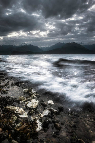 Wall Art - Photograph - Seashells By The Seashore by Ryan Manuel