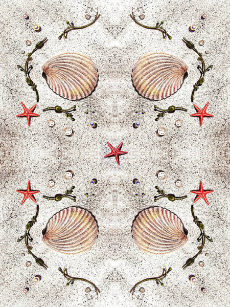 Painting - Seashells Classic Quartet by Irina Sztukowski