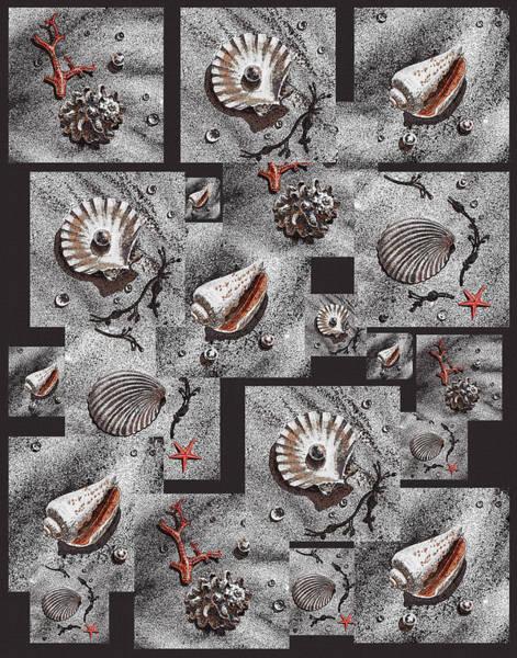 Painting - Seashells On Black by Irina Sztukowski
