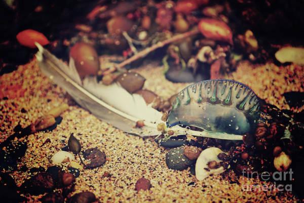 Darkside Photograph - Seaside Darkside by Karen Black