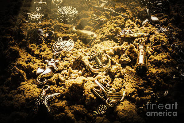 Sea Life Photograph - Seaside Of Creative Charms by Jorgo Photography - Wall Art Gallery