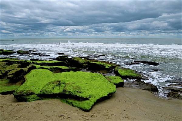 Photograph - Seaside by Ralph Jones