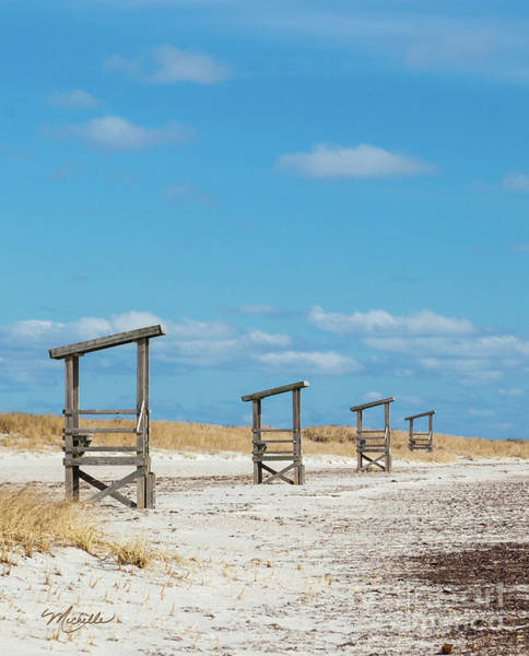 Photograph - Seaside Sentinels by Michelle Constantine