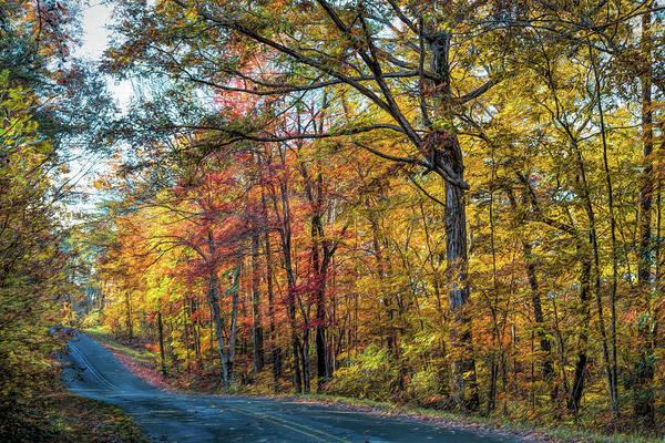 Photograph - Seasonal Beauty by John M Bailey