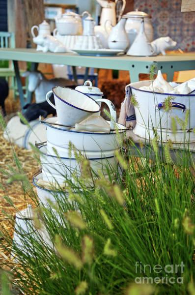 Photograph - Seasonal Farm by Ariadna De Raadt