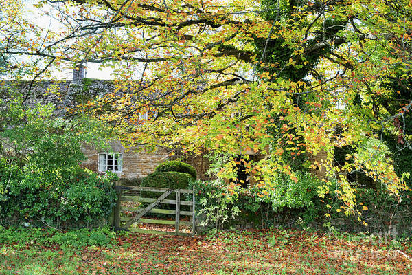 Village Gate Photograph - Seasonal Wyck Rissington  by Tim Gainey