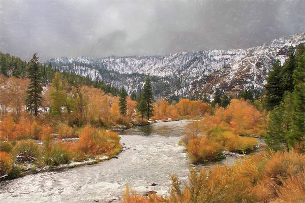 Truckee River Photograph - Seasons Collide by Donna Kennedy
