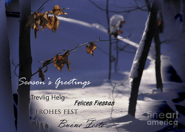 Photograph - Season's Greeting by Gerlinde Keating - Galleria GK Keating Associates Inc