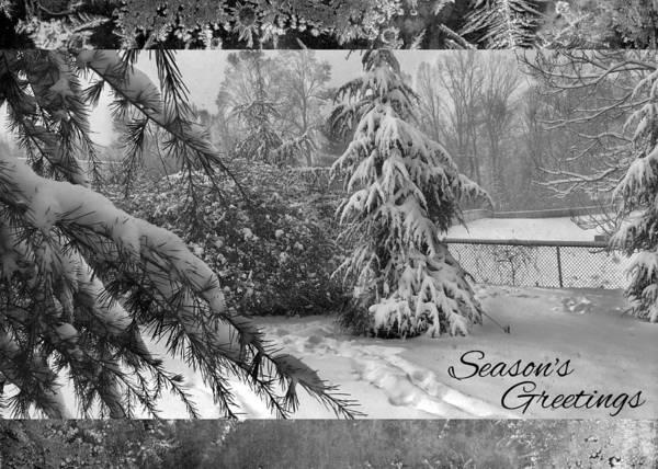 Photograph - Seasons Greetings by Robert G Kernodle