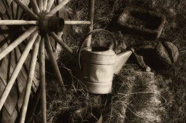 Platinum Photograph - Seasons Pass by Susan Capuano