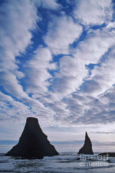 Photograph - Seastacks And Rolling Clouds by Dennis Flaherty