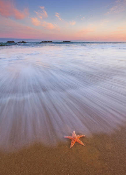 Oregon Coast Photograph - Seastar Sunrise by Darren White