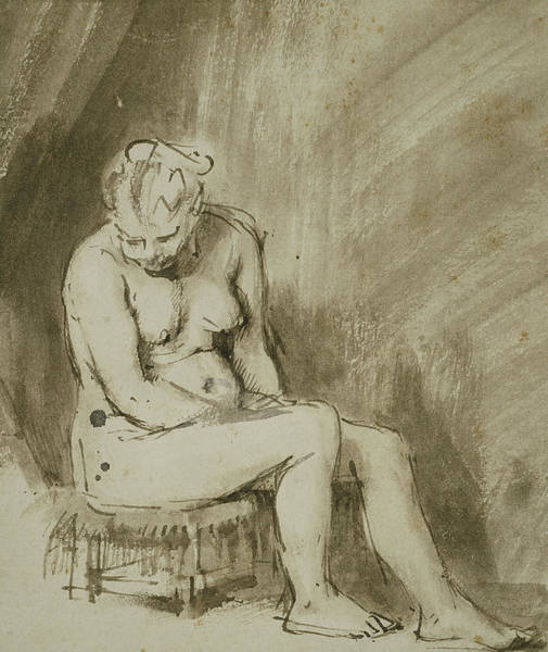Nudity Drawing - Seated Female Nude by Rembrandt