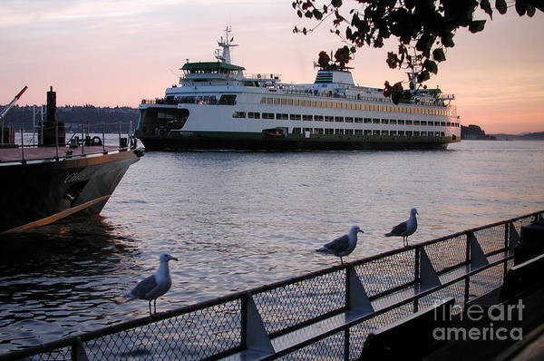 Photograph - Seattle Ferryboat by Kathi Shotwell