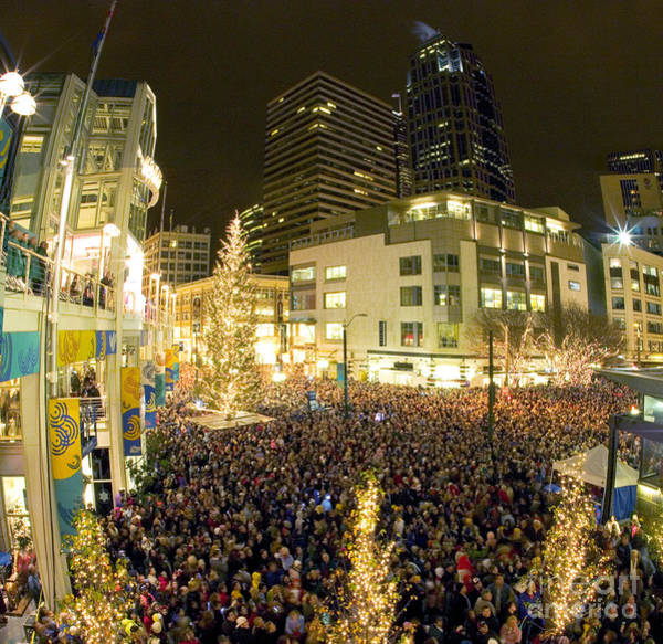 Wall Art - Photograph - Seattle Westlake Tree Lighting by Peter Simmons