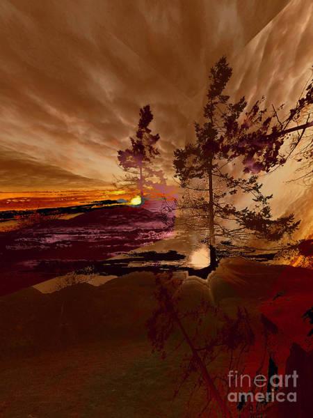 Wall Art - Photograph - Sechelt Tree 5 by Elaine Hunter