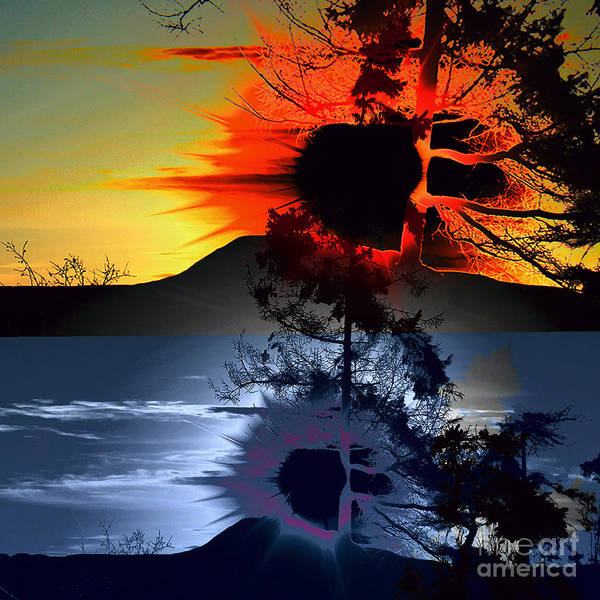 Wall Art - Photograph - Sechelt Tree Sun And Moon by Elaine Hunter