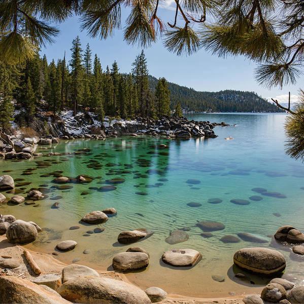 Photograph - Secret Cove Through The Trees By Brad Scott by Brad Scott