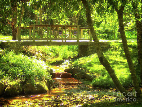 Photograph - Secret Garden Bridge by Nicole Angell