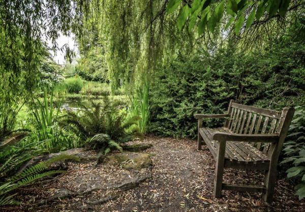 Photograph - Secret Garden by Wes and Dotty Weber