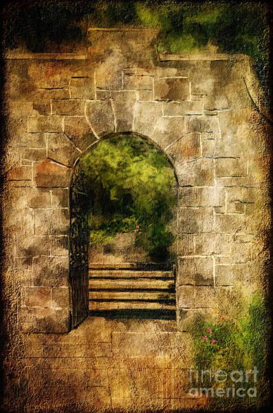 Wall Art - Photograph - Secret Garden by Lois Bryan