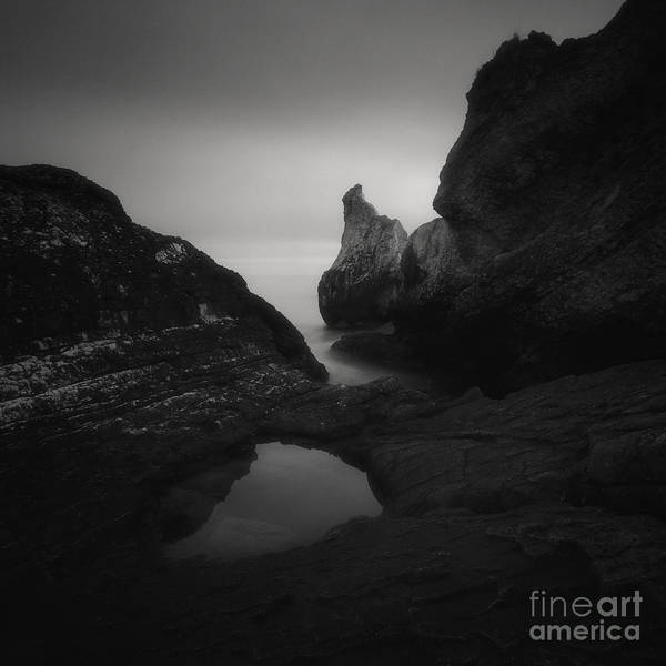Photograph - Secret Love by Yucel Basoglu