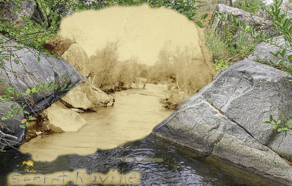 Photograph - Secret Ravine by Jim Thompson