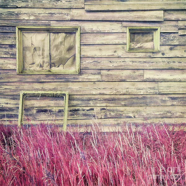 Wall Art - Photograph - Secrets by Priska Wettstein