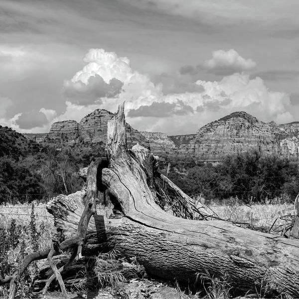 Photograph - Sedona Arizona Western Landscape 1x1 Black And White by Gregory Ballos