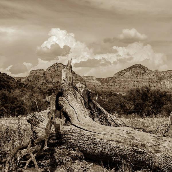 Photograph - Sedona Arizona Western Landscape 1x1 Sepia by Gregory Ballos