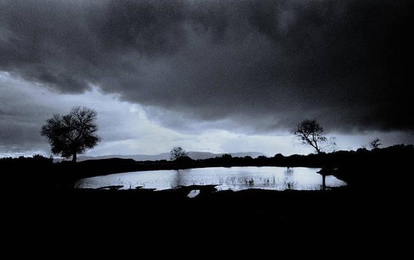 Photograph - Sedona Cow Pasture by Dave Beckerman
