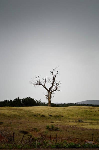 Photograph - Sedona Landscape No. 3 by David Gordon